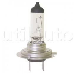 10 lampes H7 Halogènes